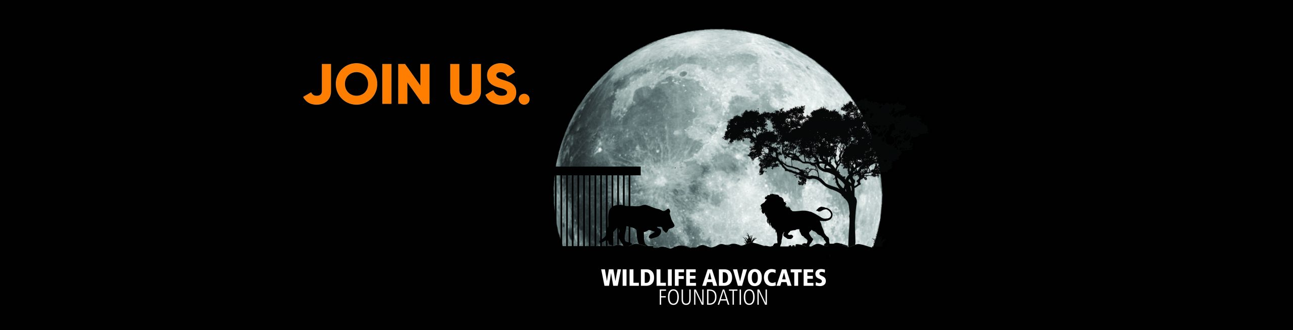 Wildlife Advocates Foundation